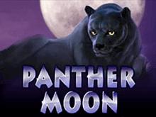 Panther Moon играть на деньги в казино Эльдорадо