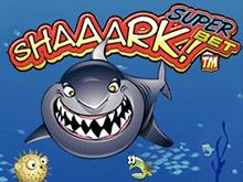 Shaaark SuperBet играть на деньги в казино Эльдорадо