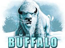 White Buffalo играть на деньги в клубе Эльдорадо