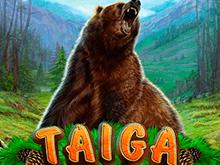 Taiga играть на деньги в казино Эльдорадо